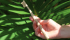 nachhaltiger-surfurlaub-bambus-zahnbuerste-03