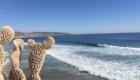 surfurlaub-in-marokko-surfen-05