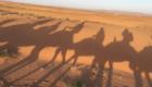 surfurlaub-in-marokko-wueste-03