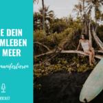 Lebe dein Traumleben am Meer – Wünsche manifestieren